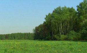 Земельные участки в Челябинске